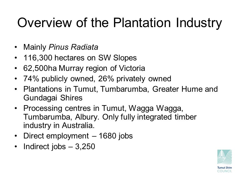 Overview of the Plantation Industry Mainly Pinus Radiata 116,300 hectares on SW Slopes 62,500ha Murray region of Victoria 74% publicly owned, 26% priv