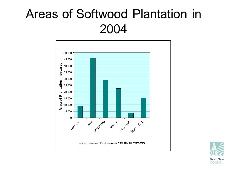 Areas of Softwood Plantation in 2004