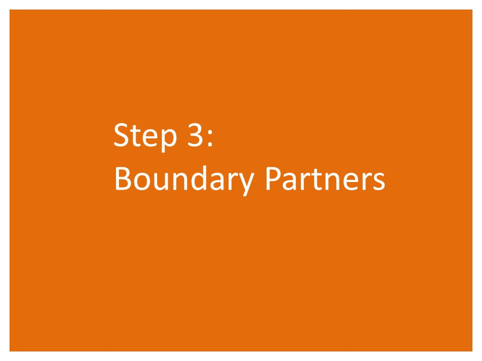 Step 3: Boundary Partners
