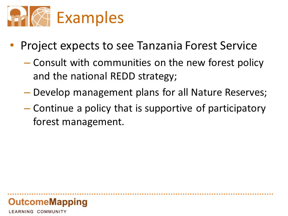 Examples Project expects to see Tanzania Forest Service – Consult with communities on the new forest policy and the national REDD strategy; – Develop management plans for all Nature Reserves; – Continue a policy that is supportive of participatory forest management.