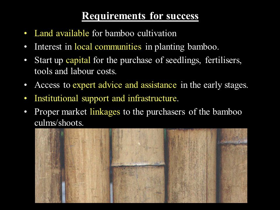 Financial aspects of a large scale bamboo plantation* (based on an example from South China) INFRASTRUCTURE COSTS (US$) Buildings and roads $60, 000 Equipment $25, 000 TOTAL $85, 000 WORKING CAPITAL Fertiliser (annually) $22, 000 Transport (annually) $6, 000 Land (annually) $91, 000 Plantlets (1st year only)$145, 000 Salaries (1st year)$485, 000 Salaries (2nd year)$235, 000 Salaries (annually, years 3 - 15)$130, 000 Management(annually) $48, 000 Miscellaneous(annually) $6, 000 TOTAL ANNUAL (YRS 3 - 15) $303, 000 ANNUAL OUTPUTS (US$) YEARS 1 - 3Zero YEAR 4$1.1 mil.