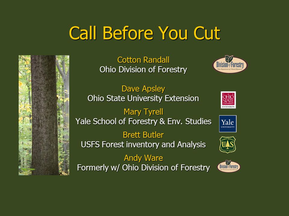 Call Before You Cut Cotton Randall Ohio Division of Forestry Dave Apsley Ohio State University Extension Mary Tyrell Yale School of Forestry & Env.