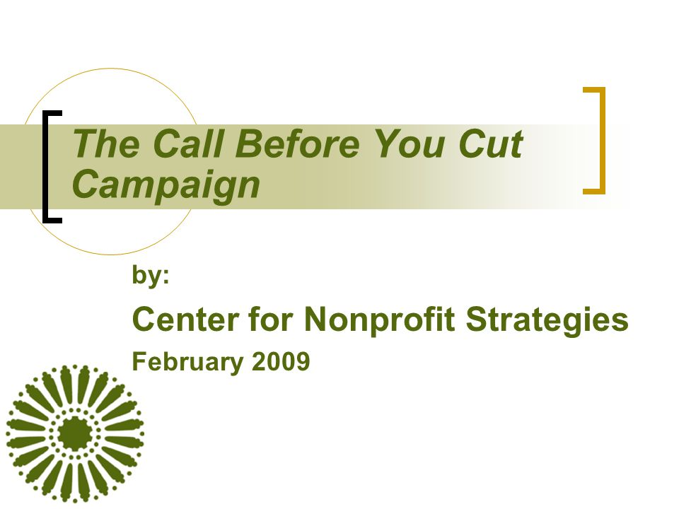 The Call Before You Cut Campaign by: Center for Nonprofit Strategies February 2009