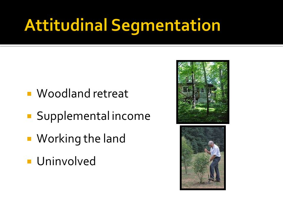Attitudinal Segmentation  Woodland retreat  Supplemental income  Working the land  Uninvolved