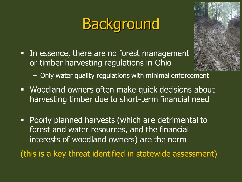 Background  In essence, there are no forest management or timber harvesting regulations in Ohio –Only water quality regulations with minimal enforcem