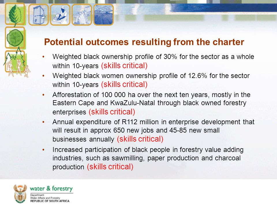Potential outcomes resulting from the charter Weighted black ownership profile of 30% for the sector as a whole within 10-years (skills critical) Weighted black women ownership profile of 12.6% for the sector within 10-years (skills critical) Afforestation of 100 000 ha over the next ten years, mostly in the Eastern Cape and KwaZulu-Natal through black owned forestry enterprises (skills critical) Annual expenditure of R112 million in enterprise development that will result in approx 650 new jobs and 45-85 new small businesses annually (skills critical) Increased participation of black people in forestry value adding industries, such as sawmilling, paper production and charcoal production (skills critical)