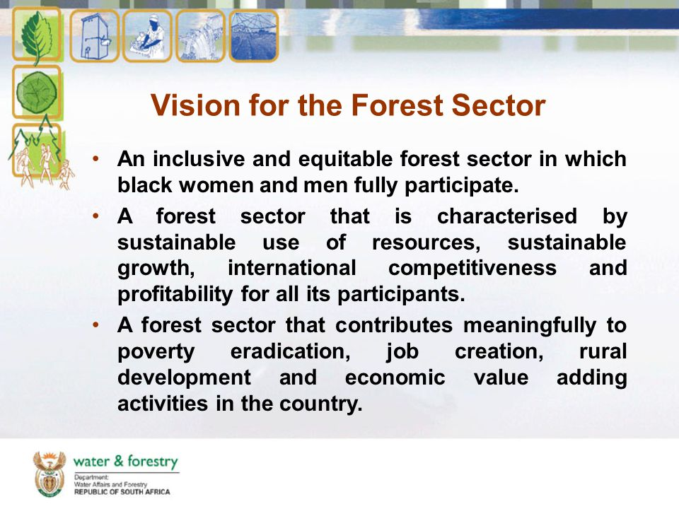 Vision for the Forest Sector An inclusive and equitable forest sector in which black women and men fully participate.
