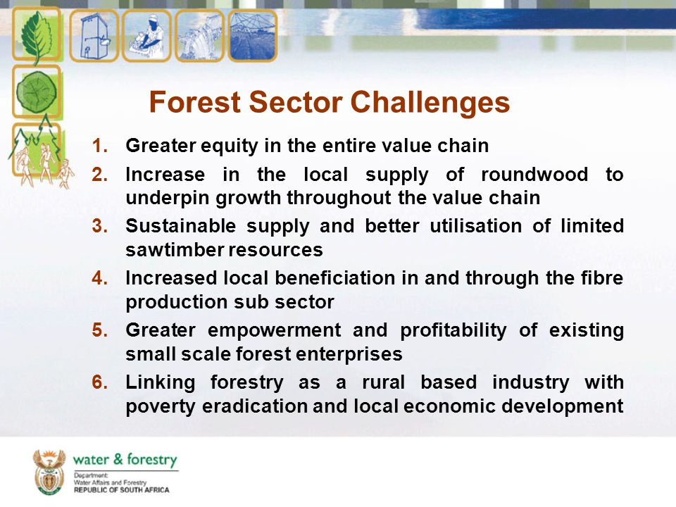 Forest Sector Challenges 1.Greater equity in the entire value chain 2.Increase in the local supply of roundwood to underpin growth throughout the value chain 3.Sustainable supply and better utilisation of limited sawtimber resources 4.Increased local beneficiation in and through the fibre production sub sector 5.Greater empowerment and profitability of existing small scale forest enterprises 6.Linking forestry as a rural based industry with poverty eradication and local economic development