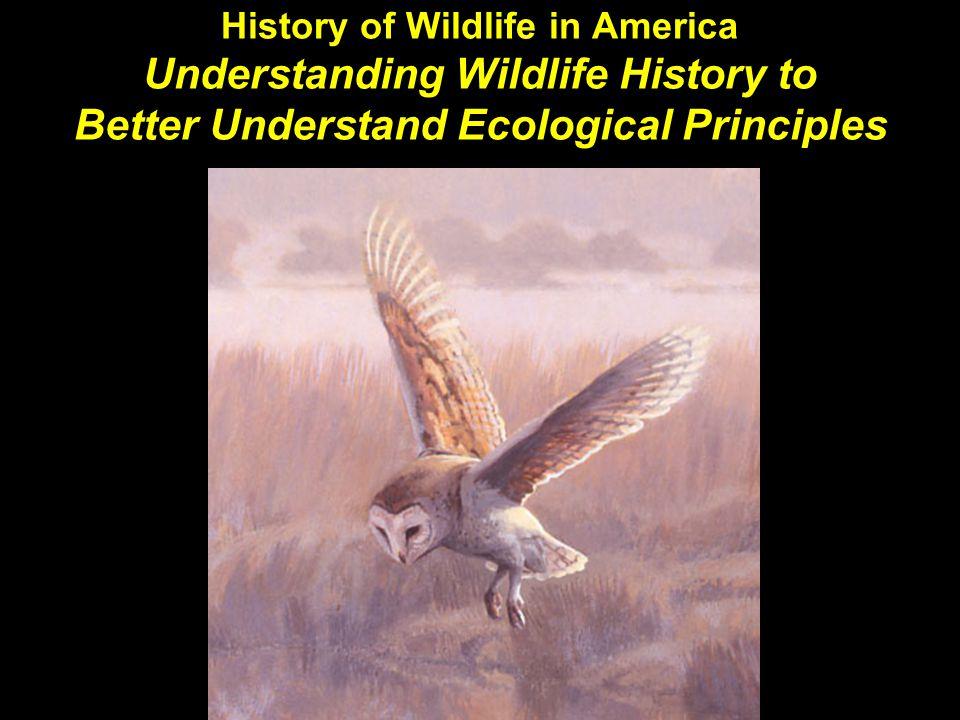 History of Wildlife in America Understanding Wildlife History to Better Understand Ecological Principles