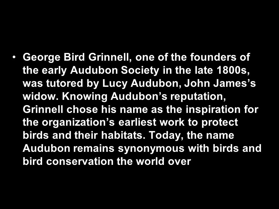 George Bird Grinnell, one of the founders of the early Audubon Society in the late 1800s, was tutored by Lucy Audubon, John James's widow.