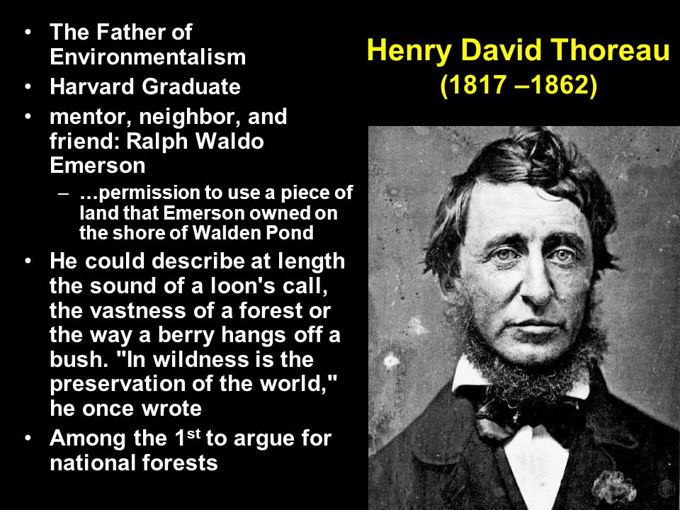 Henry David Thoreau (1817 –1862) The Father of Environmentalism Harvard Graduate mentor, neighbor, and friend: Ralph Waldo Emerson –…permission to use a piece of land that Emerson owned on the shore of Walden Pond He could describe at length the sound of a loon s call, the vastness of a forest or the way a berry hangs off a bush.
