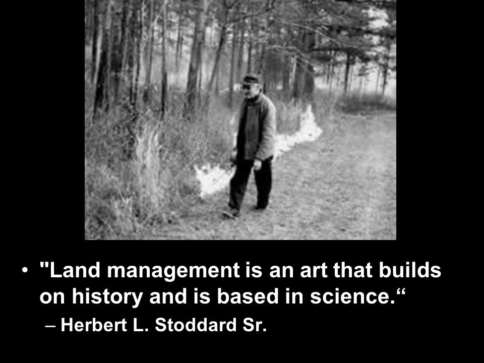 Land management is an art that builds on history and is based in science. –Herbert L.