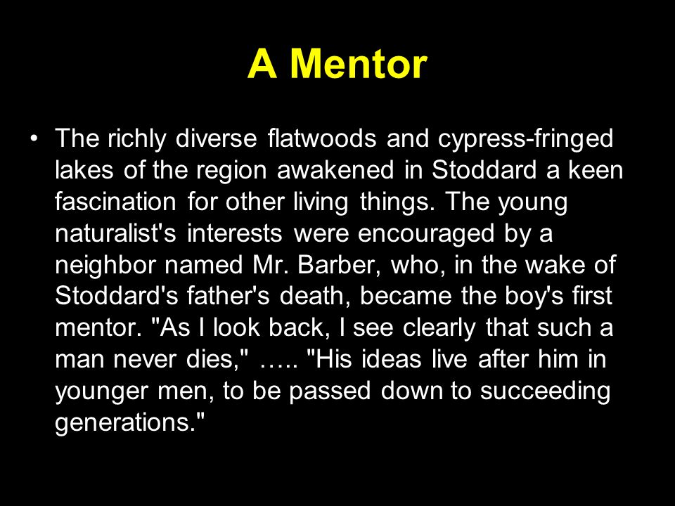 A Mentor The richly diverse flatwoods and cypress-fringed lakes of the region awakened in Stoddard a keen fascination for other living things.