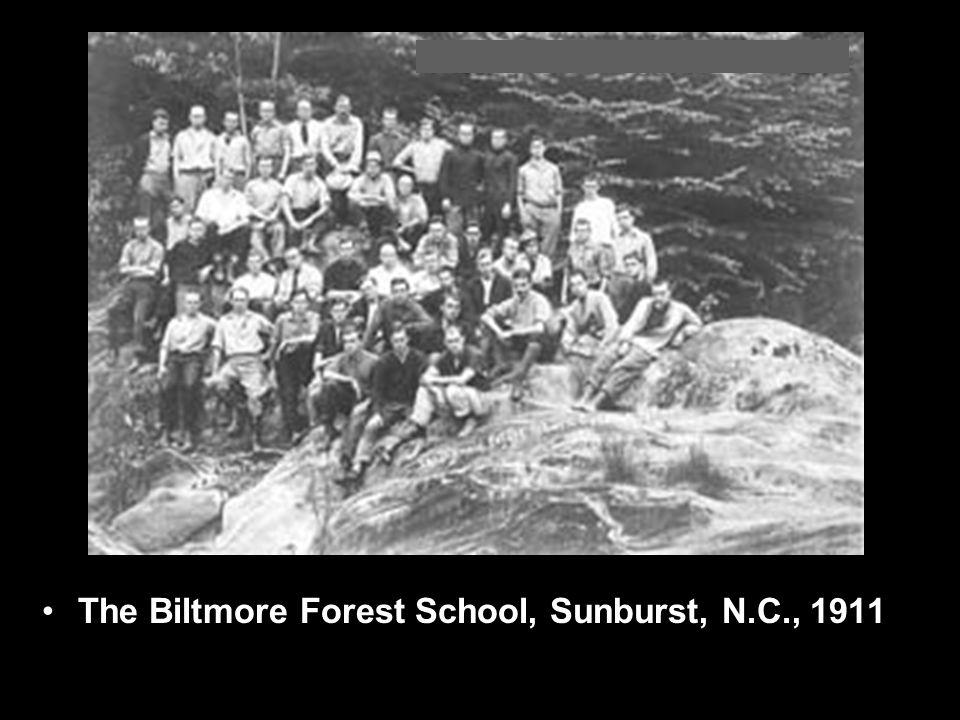 The Biltmore Forest School, Sunburst, N.C., 1911