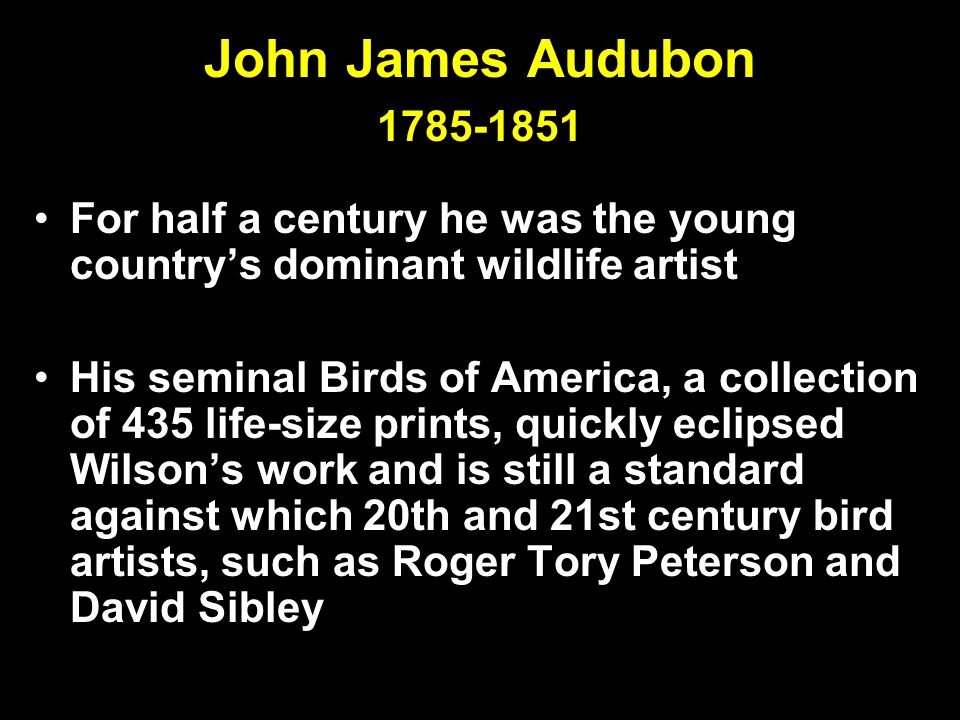 John James Audubon 1785-1851 For half a century he was the young country's dominant wildlife artist His seminal Birds of America, a collection of 435 life-size prints, quickly eclipsed Wilson's work and is still a standard against which 20th and 21st century bird artists, such as Roger Tory Peterson and David Sibley