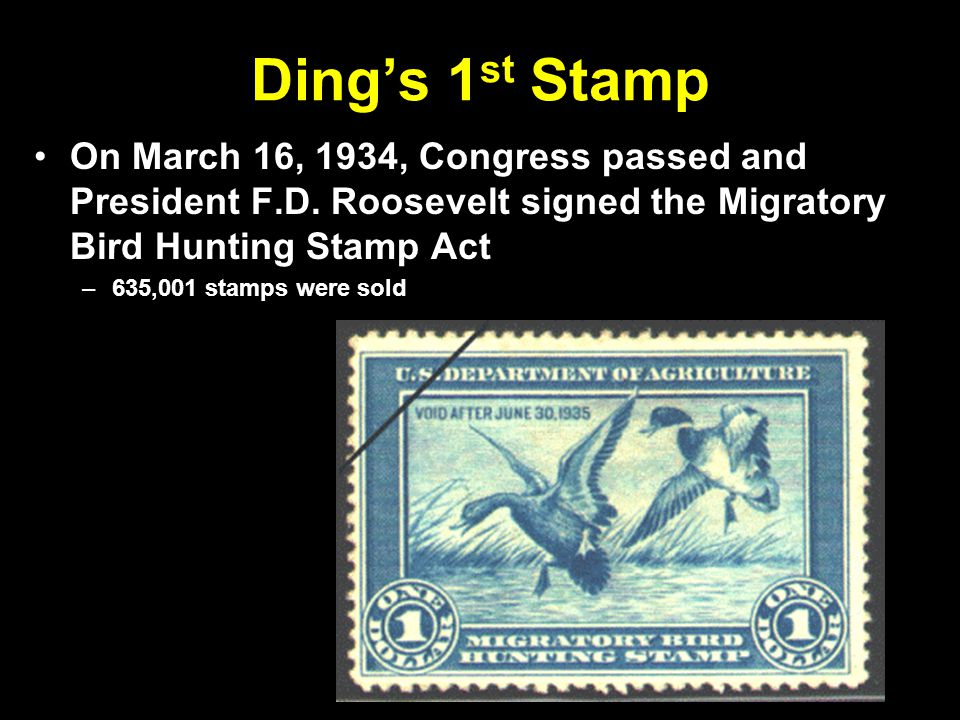 Ding's 1 st Stamp On March 16, 1934, Congress passed and President F.D.