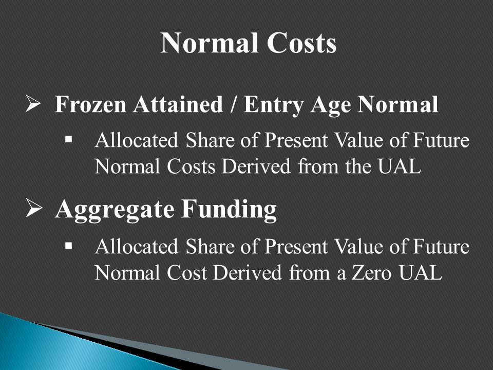 Normal Costs  Frozen Attained / Entry Age Normal  Allocated Share of Present Value of Future Normal Costs Derived from the UAL  Aggregate Funding  Allocated Share of Present Value of Future Normal Cost Derived from a Zero UAL