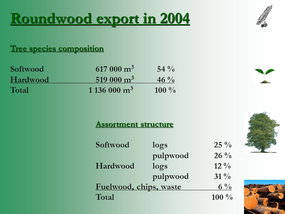 Roundwood export in 2004 Tree species composition Softwood617 000 m 3 54 % Hardwood519 000 m 3 46 % Total 1 136 000 m 3 100 % Assortment structure Softwood logs 25 % pulpwood 26 % Hardwood logs 12 % pulpwood 31 % Fuelwood, chips, waste 6 % Total 100 %