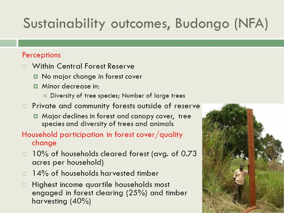 Sustainability outcomes, Budongo (NFA) Perceptions  Within Central Forest Reserve  No major change in forest cover  Minor decrease in: Diversity of tree species; Number of large trees  Private and community forests outside of reserve  Major declines in forest and canopy cover, tree species and diversity of trees and animals Household participation in forest cover/quality change  10% of households cleared forest (avg.