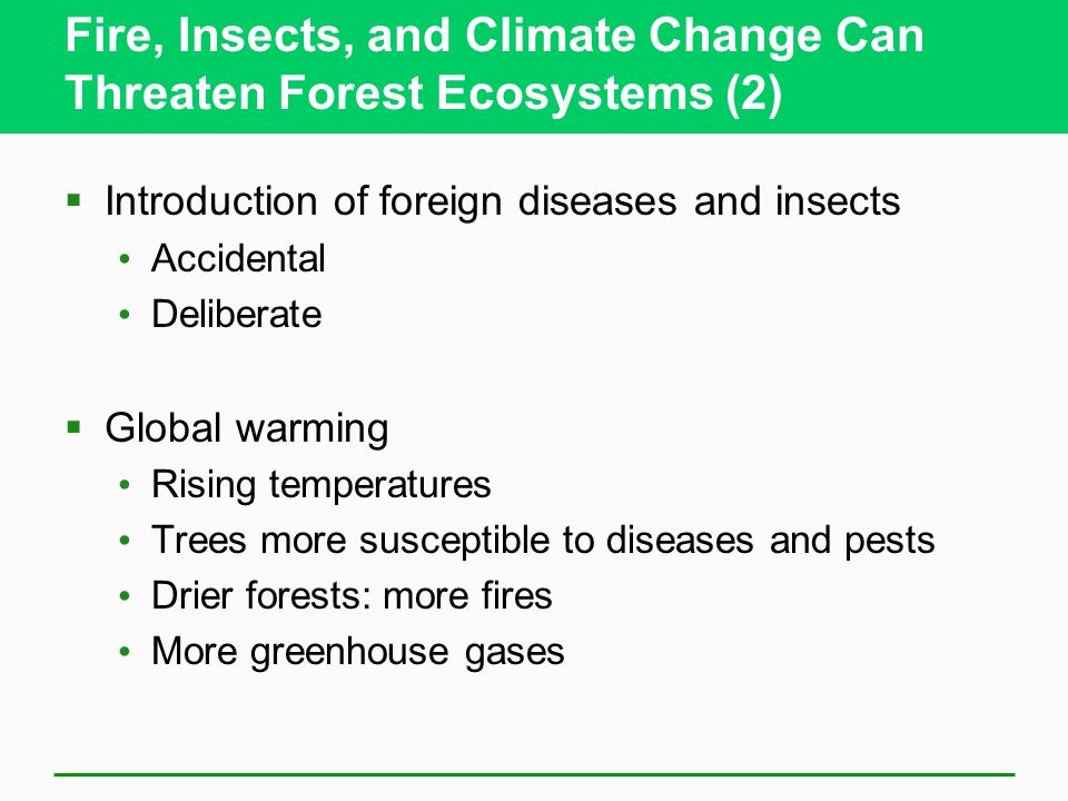 Fire, Insects, and Climate Change Can Threaten Forest Ecosystems (2)  Introduction of foreign diseases and insects Accidental Deliberate  Global warming Rising temperatures Trees more susceptible to diseases and pests Drier forests: more fires More greenhouse gases