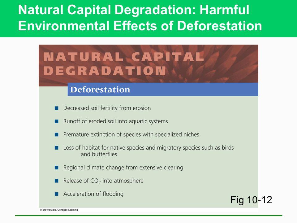 Natural Capital Degradation: Harmful Environmental Effects of Deforestation Fig 10-12