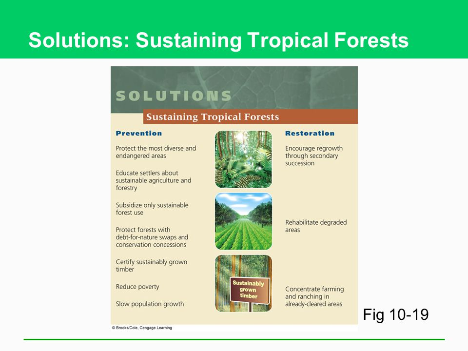 Solutions: Sustaining Tropical Forests Fig 10-19