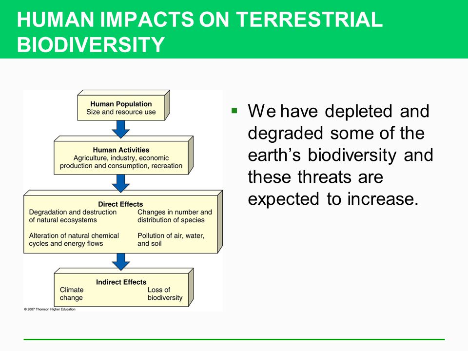 HUMAN IMPACTS ON TERRESTRIAL BIODIVERSITY  We have depleted and degraded some of the earth's biodiversity and these threats are expected to increase.