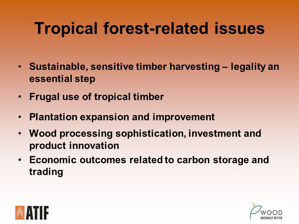 Tropical forest-related issues Sustainable, sensitive timber harvesting – legality an essential step Frugal use of tropical timber Plantation expansion and improvement Wood processing sophistication, investment and product innovation Economic outcomes related to carbon storage and trading