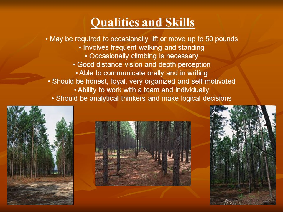 Qualities and Skills May be required to occasionally lift or move up to 50 pounds Involves frequent walking and standing Occasionally climbing is necessary Good distance vision and depth perception Able to communicate orally and in writing Should be honest, loyal, very organized and self-motivated Ability to work with a team and individually Should be analytical thinkers and make logical decisions