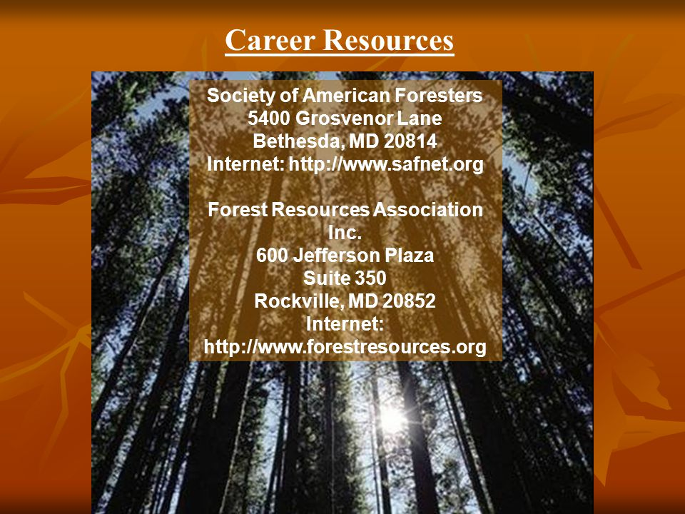 Career Resources Society of American Foresters 5400 Grosvenor Lane Bethesda, MD 20814 Internet: http://www.safnet.org Forest Resources Association Inc.