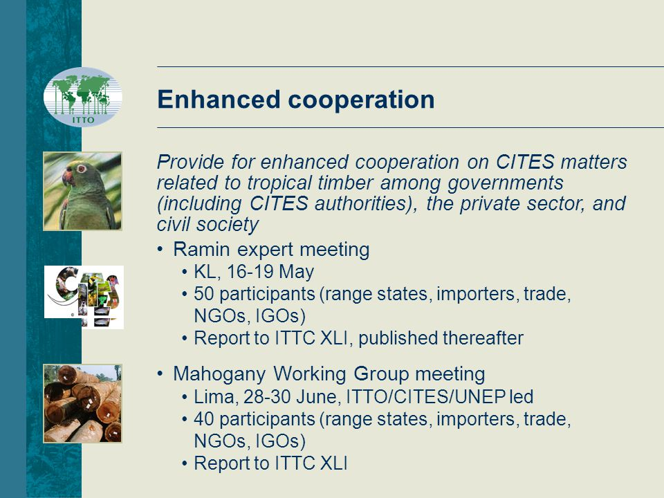 Enhanced cooperation Ramin expert meeting KL, 16-19 May 50 participants (range states, importers, trade, NGOs, IGOs) Report to ITTC XLI, published thereafter Mahogany Working Group meeting Lima, 28-30 June, ITTO/CITES/UNEP led 40 participants (range states, importers, trade, NGOs, IGOs) Report to ITTC XLI Provide for enhanced cooperation on CITES matters related to tropical timber among governments (including CITES authorities), the private sector, and civil society