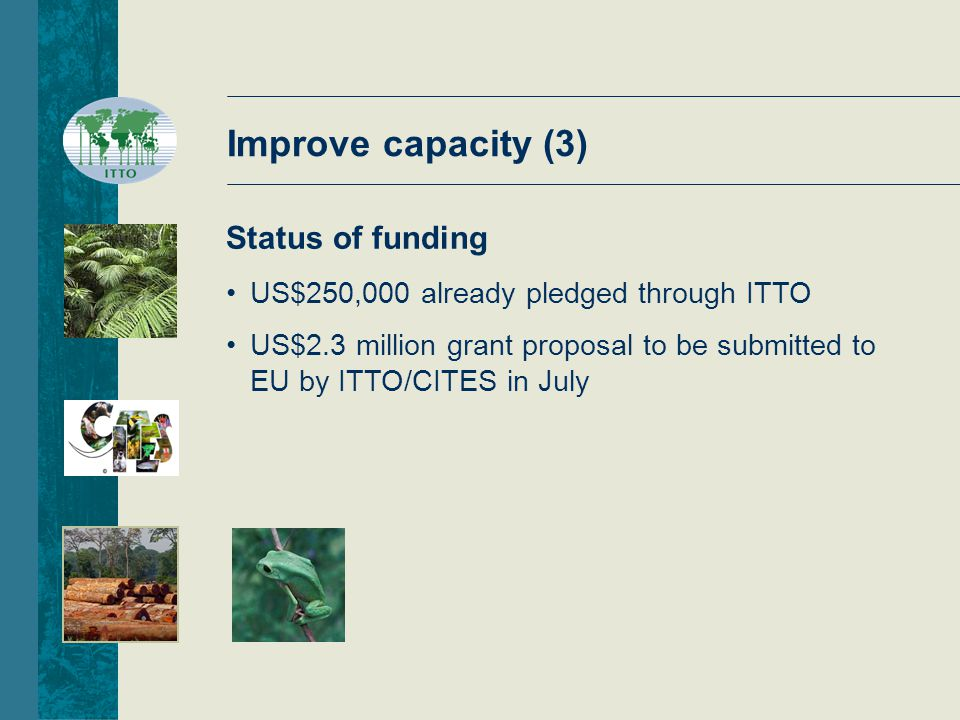 Improve capacity (3) Status of funding US$250,000 already pledged through ITTO US$2.3 million grant proposal to be submitted to EU by ITTO/CITES in July