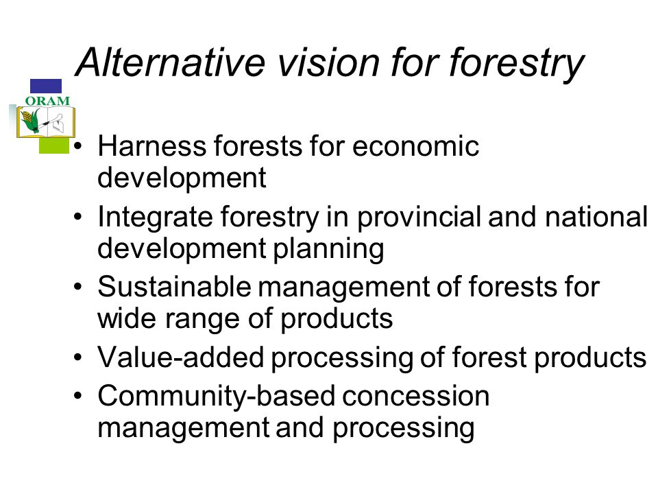 Alternative vision for forestry Harness forests for economic development Integrate forestry in provincial and national development planning Sustainable management of forests for wide range of products Value-added processing of forest products Community-based concession management and processing