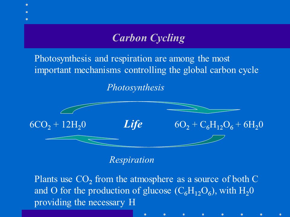 Carbon Cycling Photosynthesis 6CO 2 + 12H 2 0 Life 6O 2 + C 6 H 12 O 6 + 6H 2 0 Respiration Photosynthesis and respiration are among the most important mechanisms controlling the global carbon cycle Plants use CO 2 from the atmosphere as a source of both C and O for the production of glucose (C 6 H 12 O 6 ), with H 2 0 providing the necessary H
