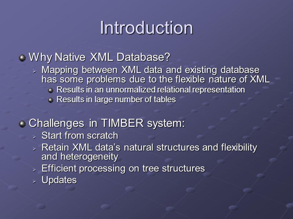Introduction Why Native XML Database.
