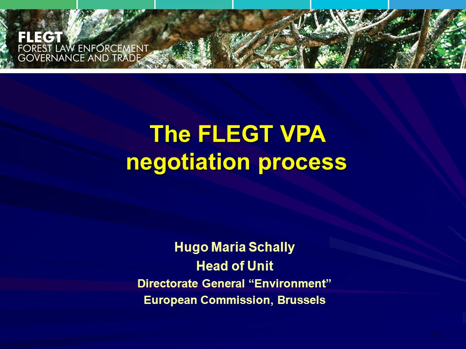 "1 Hugo Maria Schally Head of Unit Directorate General ""Environment"" European Commission, Brussels The FLEGT VPA negotiation process"