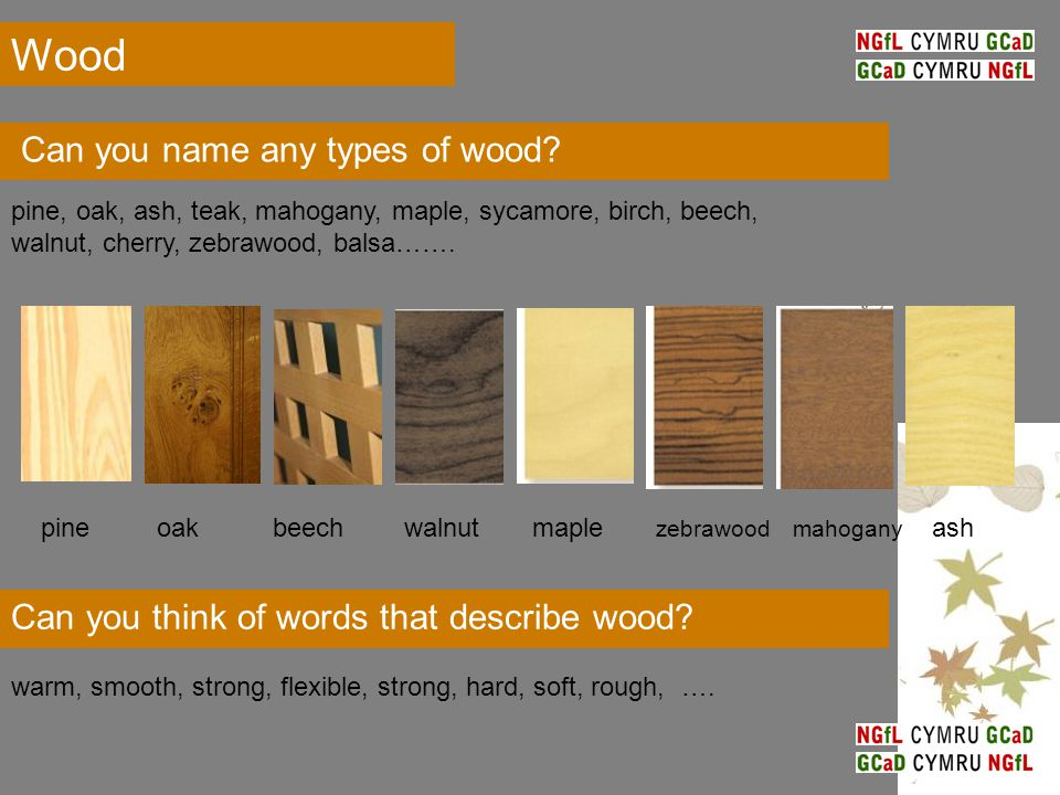 Can you think of words that describe wood? warm, smooth, strong, flexible, strong, hard, soft, rough, …. Can you name any types of wood? pine, oak, as