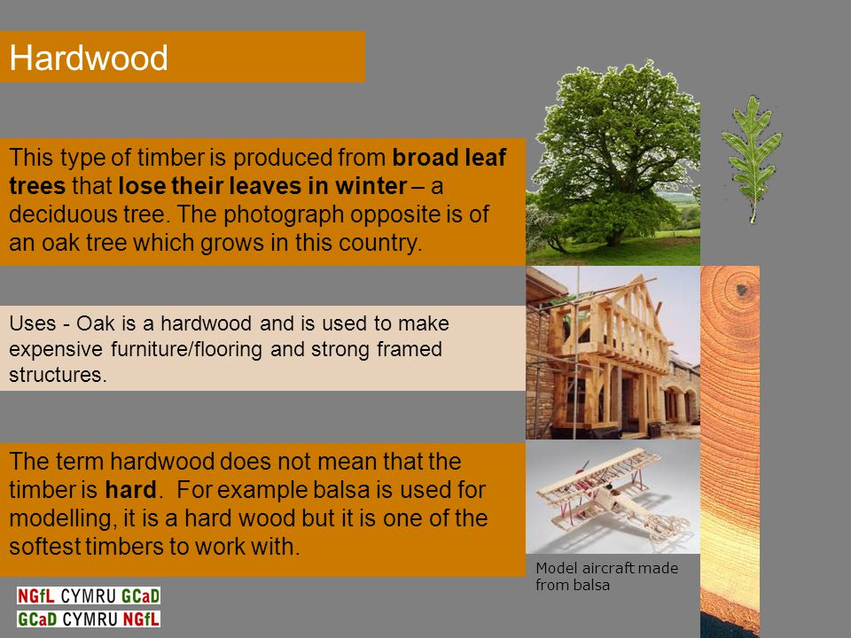 The term hardwood does not mean that the timber is hard.