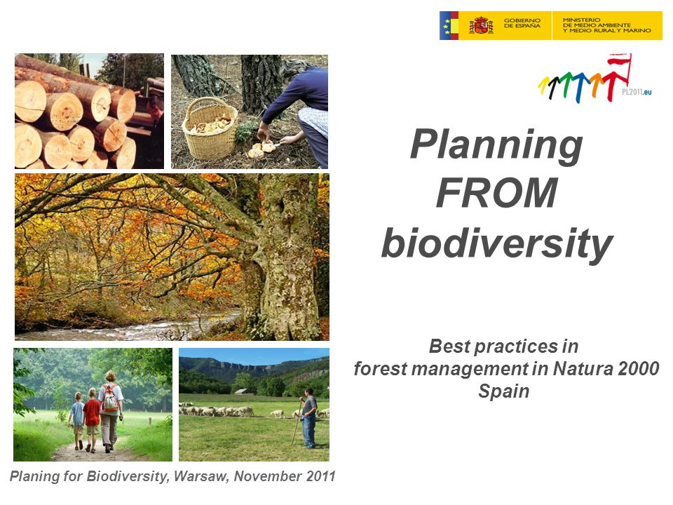 Planning FROM biodiversity Best practices in forest management in Natura 2000 Spain Planing for Biodiversity, Warsaw, November 2011