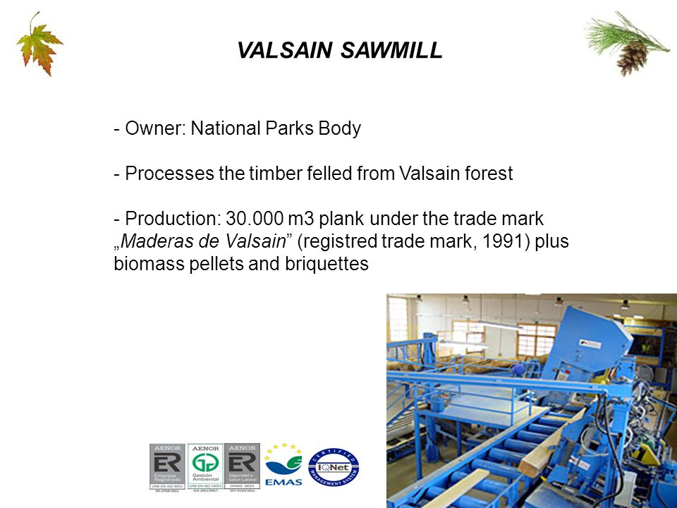 "VALSAIN SAWMILL - Owner: National Parks Body - Processes the timber felled from Valsain forest - Production: 30.000 m3 plank under the trade mark ""Maderas de Valsain (registred trade mark, 1991) plus biomass pellets and briquettes"