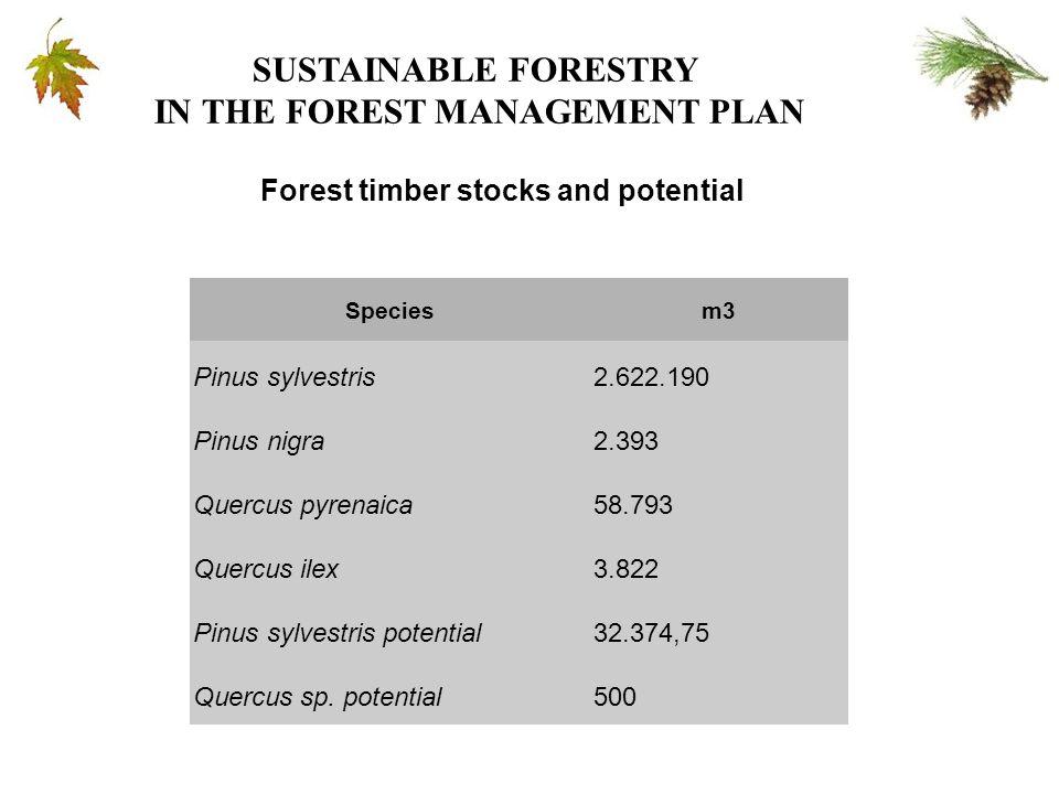 Speciesm3 Pinus sylvestris2.622.190 Pinus nigra2.393 Quercus pyrenaica58.793 Quercus ilex3.822 Pinus sylvestris potential32.374,75 Quercus sp.