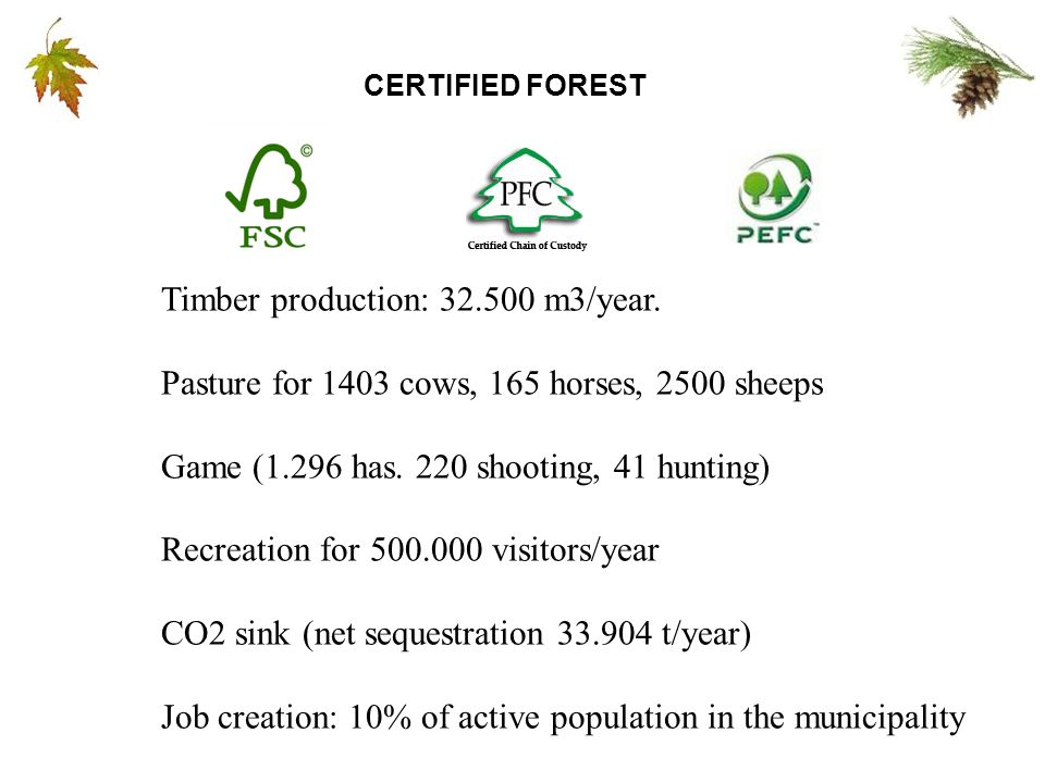 CERTIFIED FOREST Timber production: 32.500 m3/year.