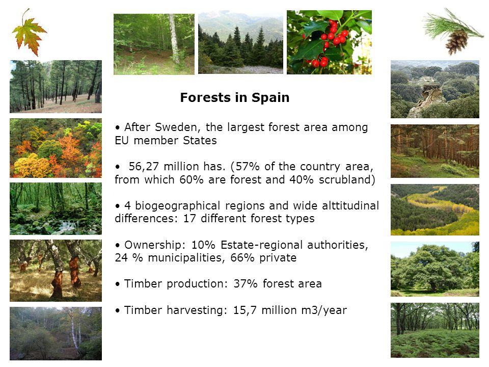 4 Biogeographical Regions 116 habitat types (including 27 forest habitats Nearly 27% of Spain (plus marine areas)