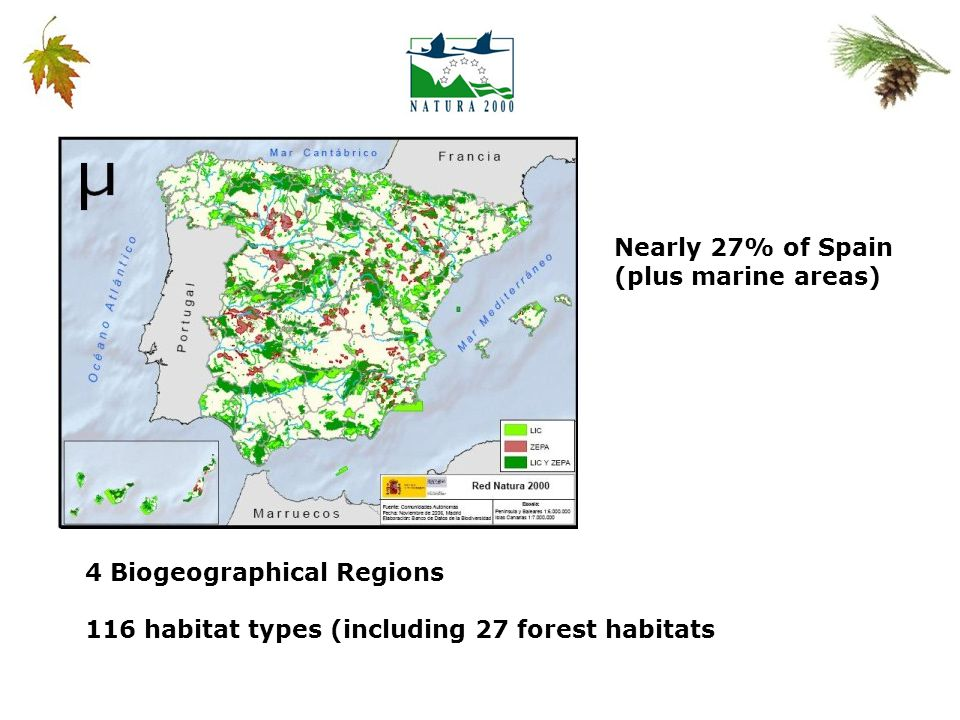 4 Biogeographical Regions 116 habitat types (including 27 forest habitats Nearly 27% of Spain (plus marine areas)