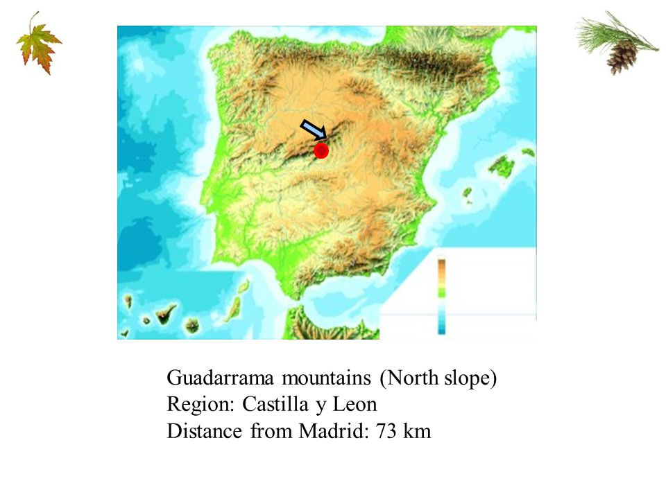 Guadarrama mountains (North slope) Region: Castilla y Leon Distance from Madrid: 73 km