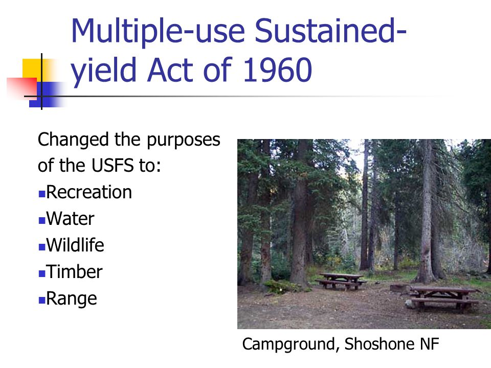 Multiple-use Sustained- yield Act of 1960 Changed the purposes of the USFS to: Recreation Water Wildlife Timber Range Campground, Shoshone NF