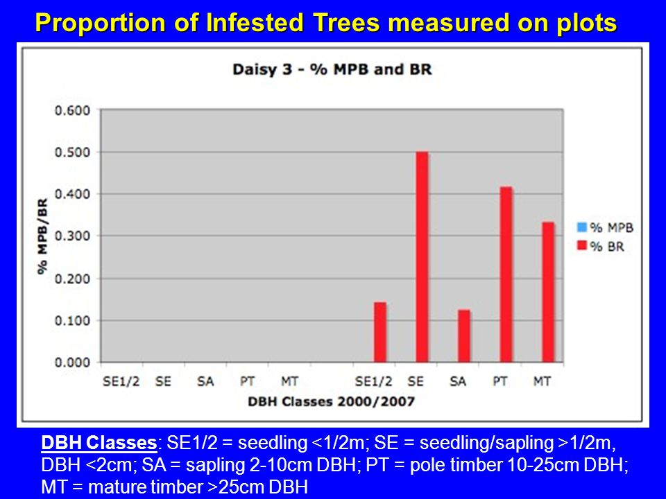 Proportion of Infested Trees measured on plots DBH Classes: SE1/2 = seedling 1/2m, DBH 25cm DBH