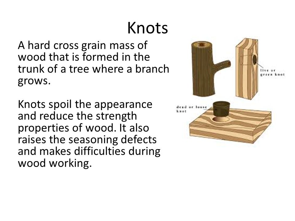 Knots A hard cross grain mass of wood that is formed in the trunk of a tree where a branch grows.
