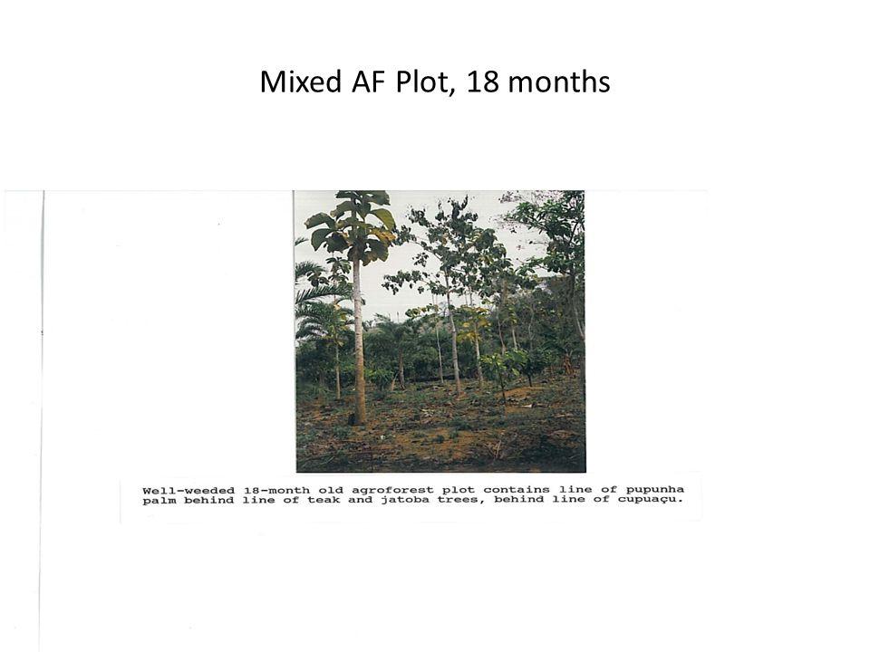 Mixed AF Plot, 18 months