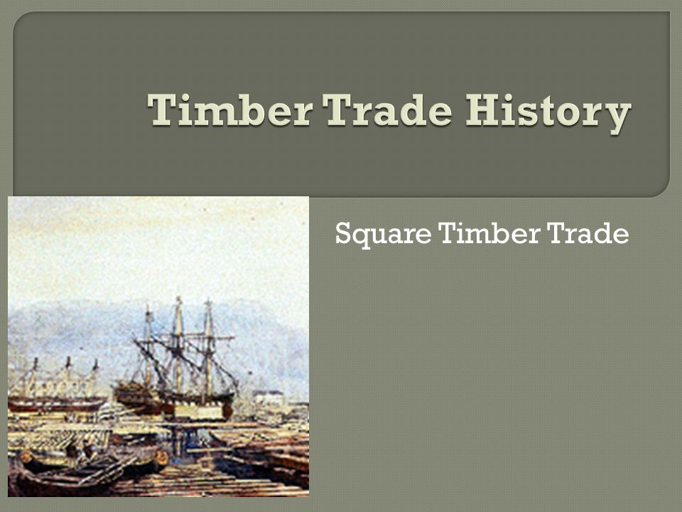 Square Timber Trade